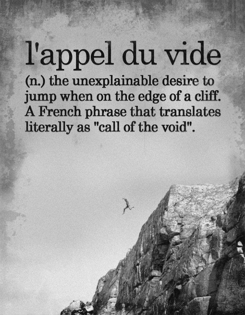 l, appel du vide - call of the void - the unexplainable desire to jump when on the edge of a cliff.