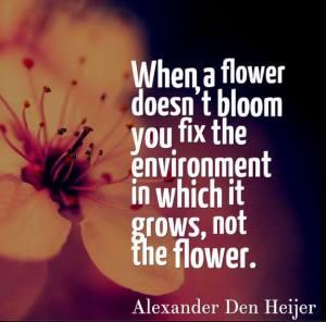 alexander-den-heijer-when-flower-doesnt-bloom-you-fix-environment-it-grows-not-the-flower