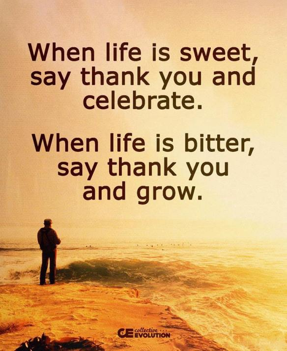 ce-when-life-is-sweet-say-thank-you-and-celebrate-when-life-is-bitter-say-thank-you-and-grow