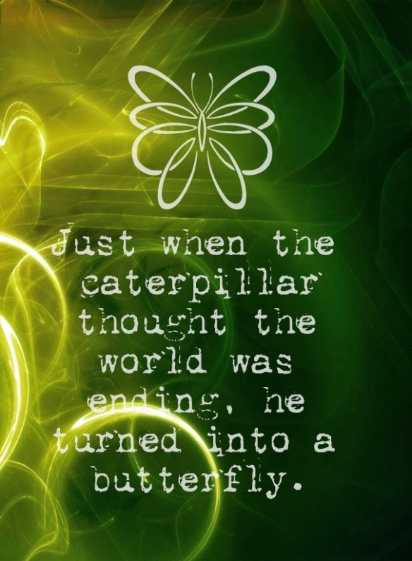 just-when-the-caterpillar-thought-the-world-was-ending-he-turned-into-a-butterfly