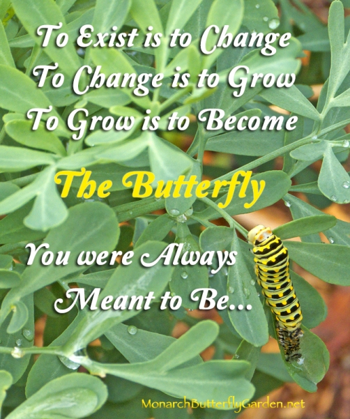 to-exist-is-to-change-to-change-is-to-grow-to-grow-is-to-become-the-butterfly-you-were-all-ways-meant-to-be