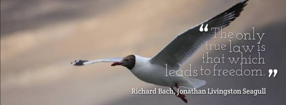 Richard Bach --The only true law is that which leads to freedom-- from Jonathan Livingston Seagull