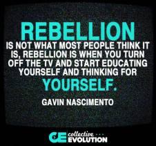 Gavin Nascimento - Rebellion is ... turning off the tv