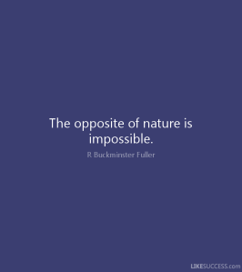 Buckminster Fuller - The opposite of nature is impossible