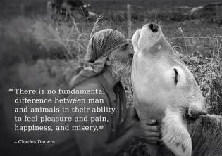 Charles Darwin - the Ability To Feel is by ALL anima-L
