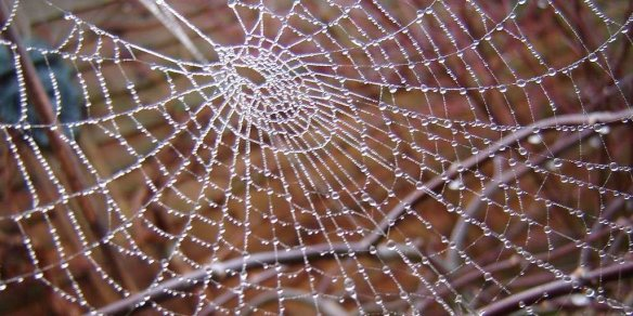 ΙΣΤΟΣ ΑΡΑΧΝΗΣ - spider web