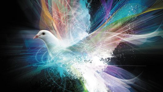 Dove in the Cosmos ~ Frequency of