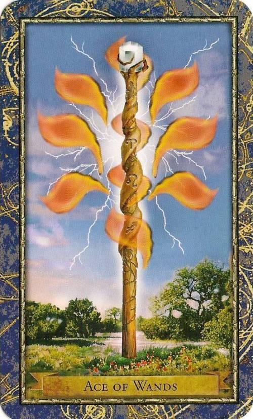 ACE OF RODS or WANDS - minor arcana tarot card