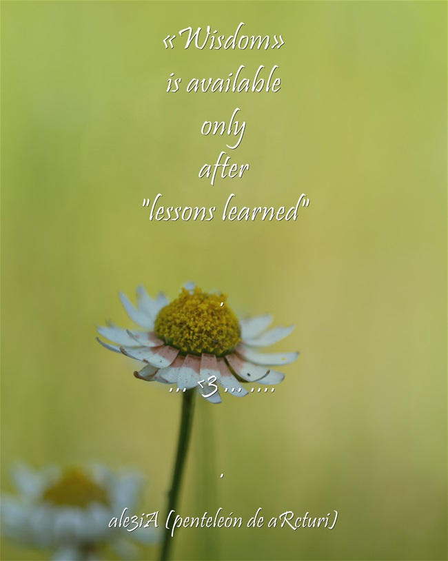 Wisdom is available only after lessons learned. daisy
