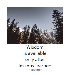 awnidea - Wisdom is available only after lessons learned . tree-tops