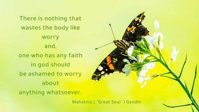 Mahatma Gandhi - There is nothing that wastes the body like worry and, one who has any faith in god should be ashamed to worry about anything whatsoever . butterfly+flower