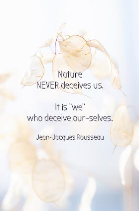 Rousseau - Nature never deceives us. it is WE who deceive OurSelves . new Quazio