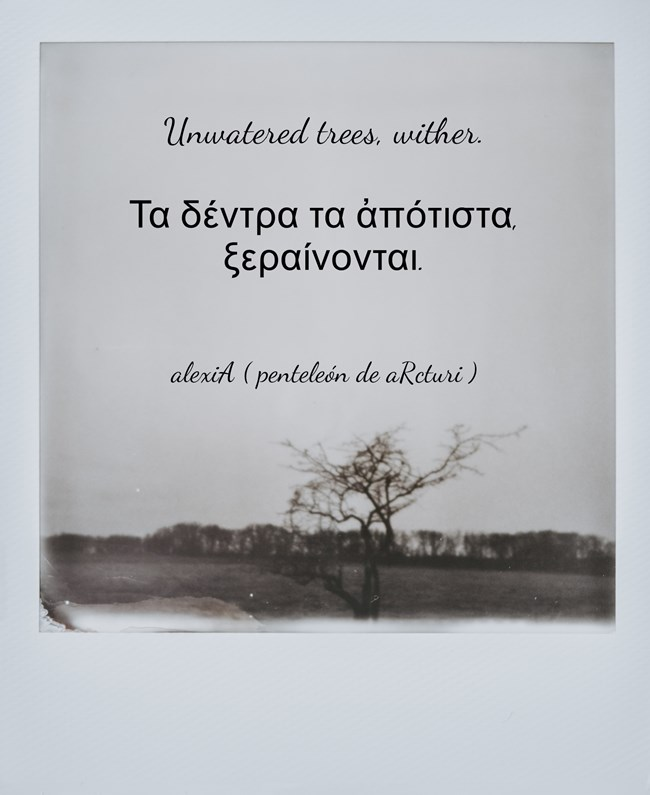 unwatered trees,wither - τα δέντρα τα ἀπότιστα ξεραίνονται .LG