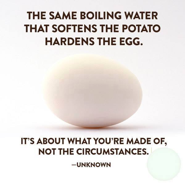 Same water that softens the potato, hardens the egg - what You are made of, not the circumstances