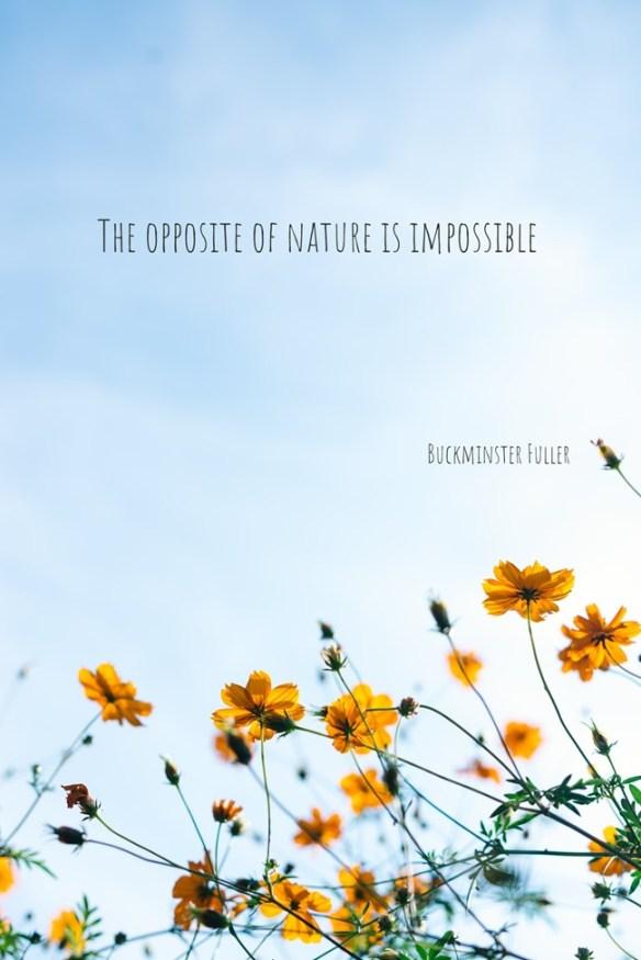 the opposite of nature is impossible .quozio