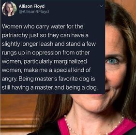 Allison Floyd - Women who carry water for the patriarchy, just so they can have ... Being master,s favourite dog, is still having a master and being a dog.