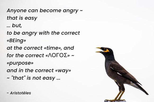 Aristotéles - correct WAY of ,,angry,, ...