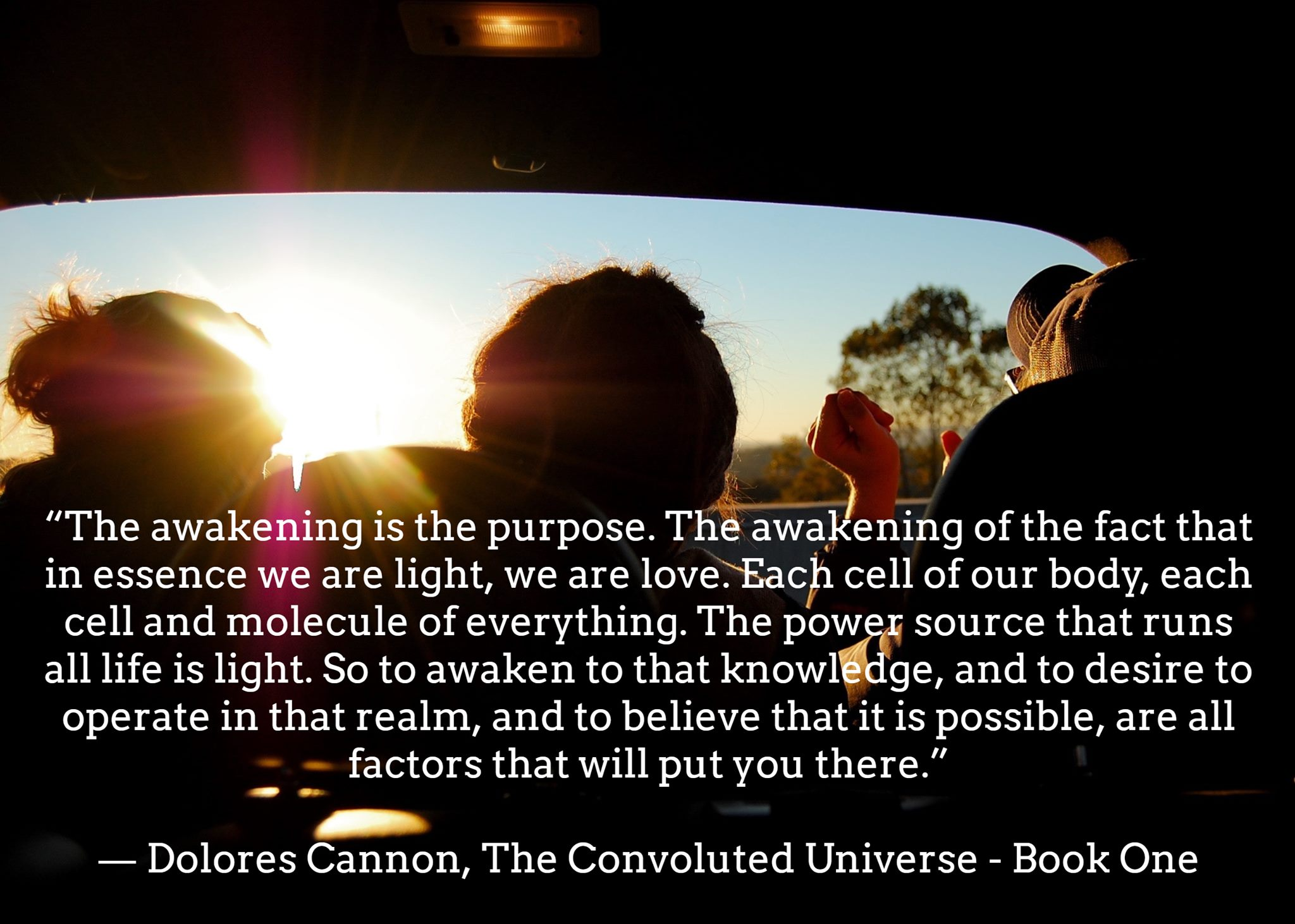 Dolores Cannon - The Awakening IS The Purpose ...